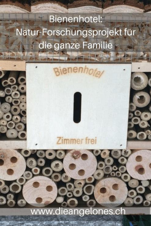 Bienenhotel für Mauerbienen