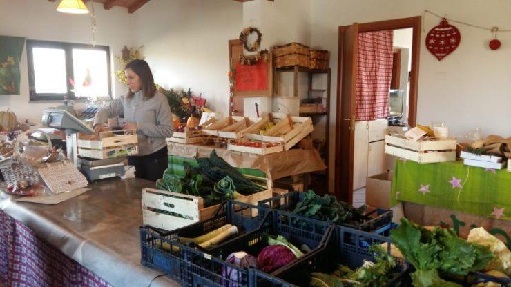 Nachhaltig einkaufen: lokal und saisonal
