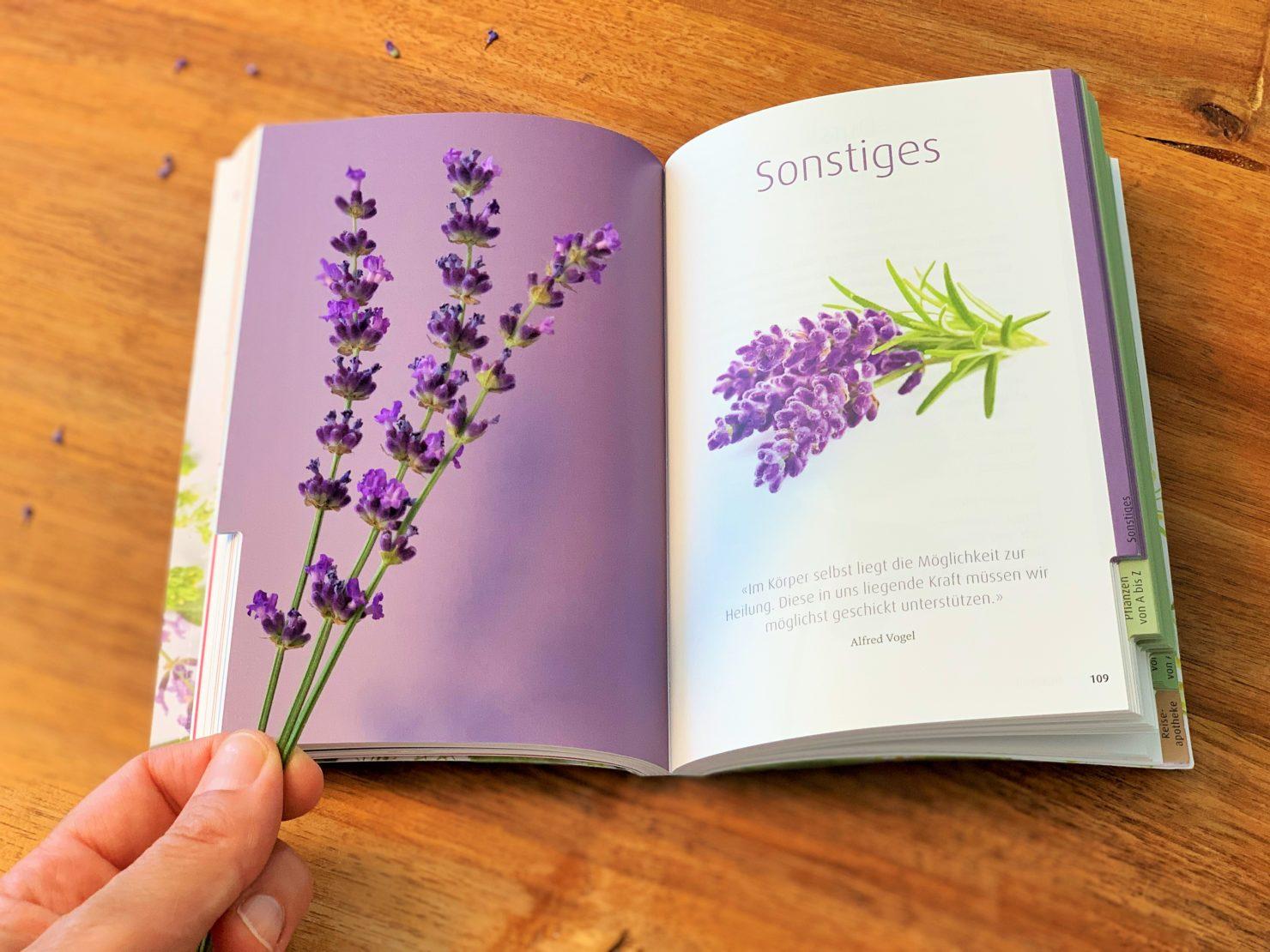 Heilende Pflanzen und Kräuter