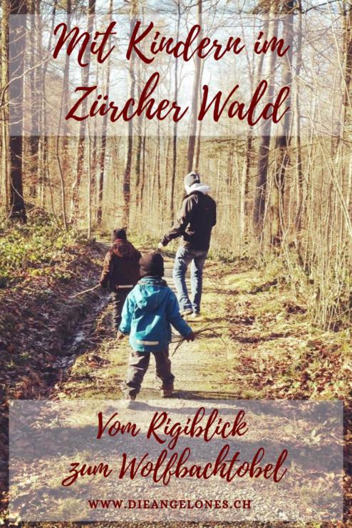 Dem Zürcher Sonnenhang entlang: Ein Spaziergang mit der Familile durch den Zürcher Wald vom Rigiblick zum Wolfbachtobel.