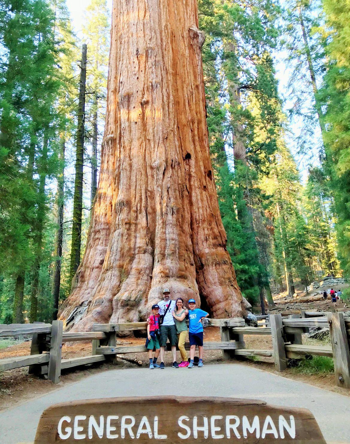 Sequoia National Park mit Kindern - Familienreise durch die USA