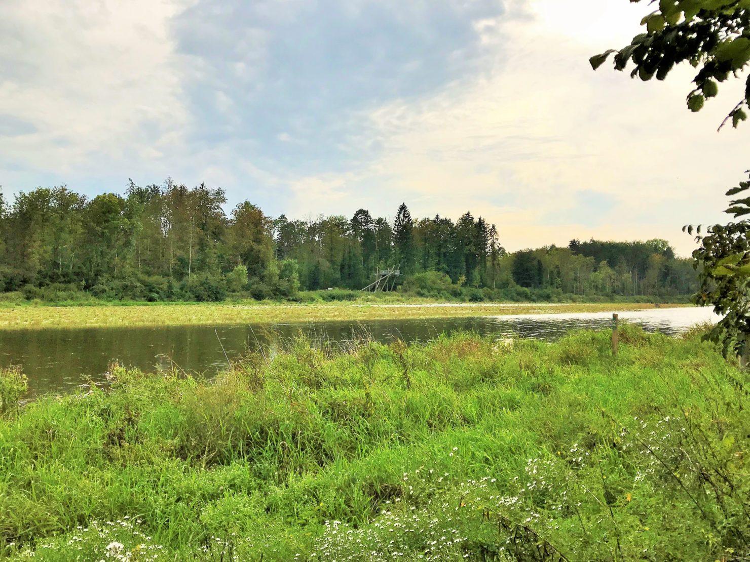 Naturzentrum Thurauen