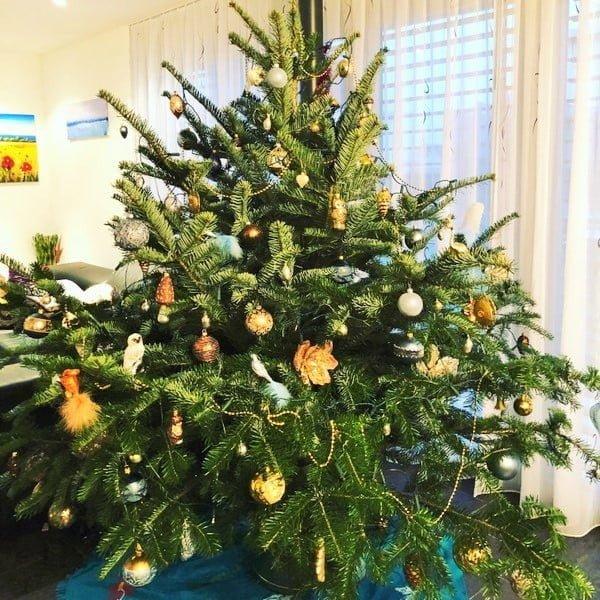 Weihnachten Samichlaus Christkind Zauber