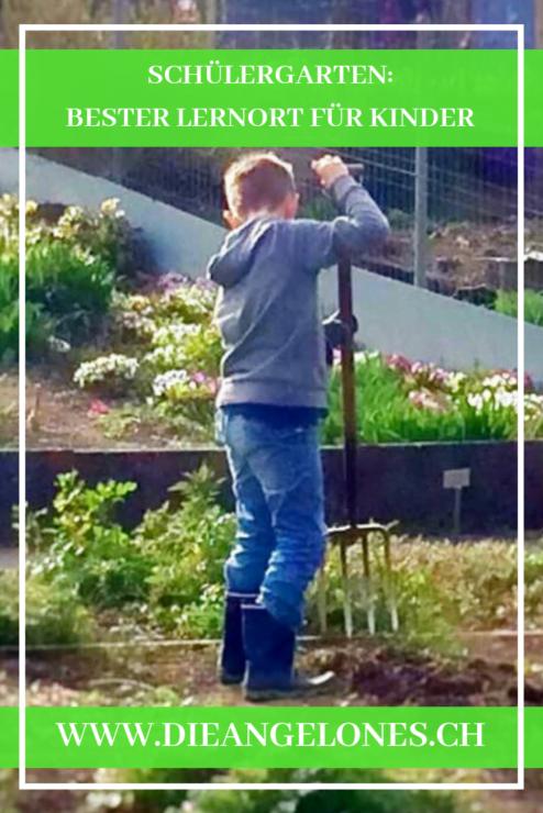 Schülergarten in Zürich oder wenn Kinder gärtnern