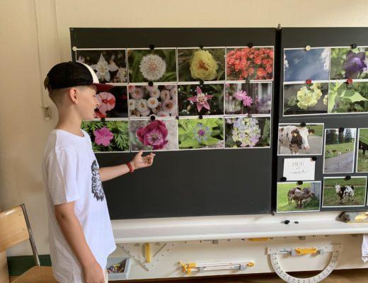 Universikum Kurse: Wo hochbegabte Kinder ihr Potenzial ausleben