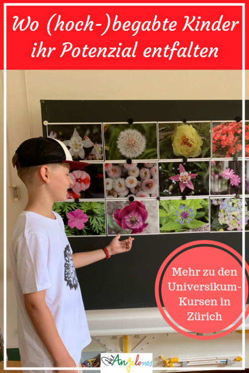 (Hoch-)Begabung bei Kindern ist in der Schweiz leider immer noch ein Tabu-Thema. Eltern sprechen ungern über ihre hochbegabten Kinder, weil sie sich vor einem Stigma fürchten. Sie haben Angst, als Eltern, die etwas Besonderes beweisen wollen, da zu stehen. Tabu hin oder  her – es gibt nicht wenige (hoch-)begabte Kinder. Sie sind im Regelunterricht oftmals unterfordert. Was ist für diese Kinder angebracht? Was können Eltern tun? Wir berichten euch über unsere Erfahrungen mit den Universikum-Kursen in Zürich.