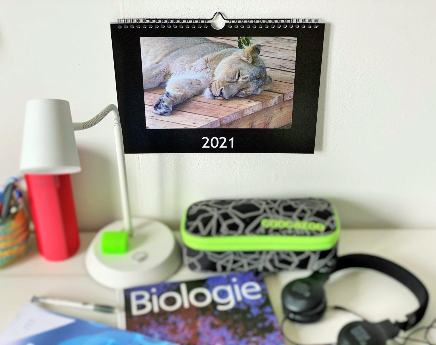 Fotokalender für die Familie sind einfach und schnell gemacht.