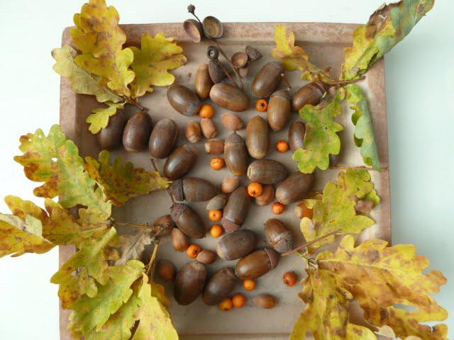 Herbst-Deko mit Eicheln