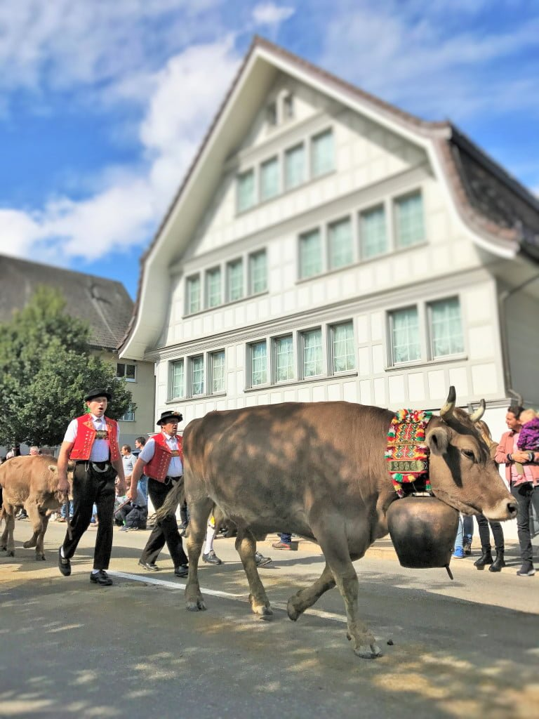 Tradition, Natur und Tiere: Auszeit im Reka-Feriendorf Urnäsch