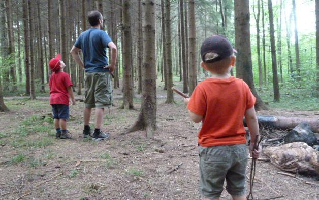 Naturschule spielen lernen im Wald